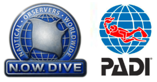now-dive-og-padi